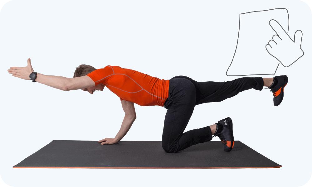 Gesundheitssport – Mehr über sportliche Übungen, die deine Gesundheit fördern!